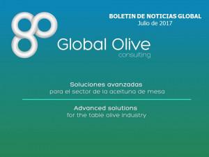 Boletín de Noticias Global Julio 2017