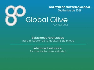 pLANTILLA PARA ENVIO Boletín de Noticias Global Septiembre 2019